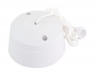 10A 2 Way Ceiling Switch Selectric LG1731 LG1731