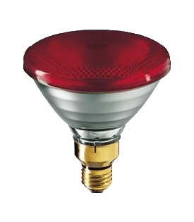 Infra Red Heat Lamps
