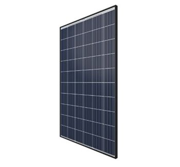 Solar Panel Qcells 285W Poly Black Frame QPLUSBFRG4285